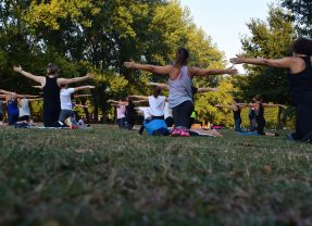 How Startups Can Promote Employee Wellness on a Shoestring Budget